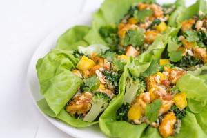 Orange Mango Chicken in Lettuce Cups with Cashews and Chillies