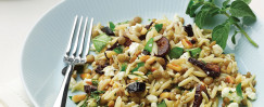 Orzo, Lentil, and Fig Salad