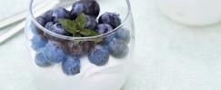Blueberry Lemon Yogurt Parfait